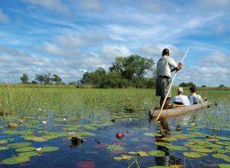 Victoria Falls and Botswana 8 day tour